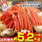 かに カニ 蟹 ズワイ蟹 ずわい蟹 ずわいがに ズワイガニ | 大型4Lボイル本ずわいがに肩脚 16肩(約5.2kg)【送料無料】