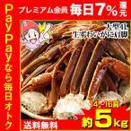 かに カニ 蟹 ズワイガニ  | 大型4L生ずわい蟹肩脚 14肩(約5kg)【送料無料】