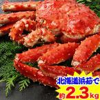 かに カニ 蟹 タラバ蟹 たらば蟹 たらば蟹 タラバガニ | 北海道紋別浜茹で たらばがに姿 2.3kg超【送料無料】