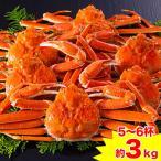 かに カニ 蟹 ズワイガニ ボイル| カナダ産ボイルずわい姿 5〜6杯(約3kg)