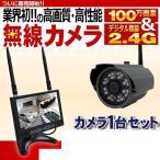 カメラ1台とモニターのセットです