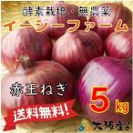 オーガニック 自社農場直送 赤玉ねぎ 農薬無散布 5kg送料無料