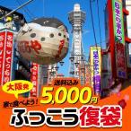 egolf_fuku-5000-a
