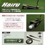 Hairuストローク パッティングの練習器(うまくなるカップ、DVD付)(イーアンドエフ リョーマゴルフ)