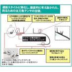ハヤブサ(Hayabusa) テンヤ SW410 船太刀魚テンヤTG フッ素コーティングフック 40号 #02 妖艶グロー SW410