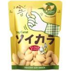 大塚製薬 ソイカラ オリーブオイルガーリック味 27