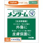 【第3類医薬品】近江兄弟社 メンターム 85G