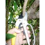 太い枝をらく切り! 4段ラチェット切断