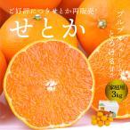 せとか 愛媛県産 せとか 家庭用 良品 3kg L~4L