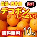 愛媛西宇和産 デコポン(しらぬひ) 訳あり家庭用 送料無料 10kg