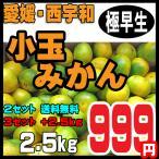 橘子 - 愛媛みかん 西宇和産 小玉みかん 訳あり家庭用 2.5kg 2セット以上ご注文で送料無料