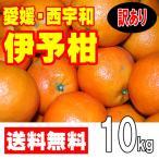 柑橘 - 愛媛西宇和産 伊予柑 訳あり家庭用 10kg 送料無料 産地直送
