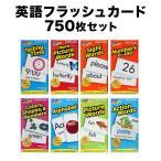 フラッシュカード 750枚セット 幼児 子供 小学生 英語教材 英会話教材 子供用