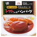 介護食 エバースマイル トマトソースハンバーグ 115g