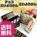 井村屋 えいようかん食べくらべ4個セット (えいようかん2個+チョコえいようかん2個)