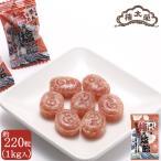 父の日 お中元 プレゼント 梅ぇ塩飴 1kg 約220粒 大容量 たっぷり 塩あめ 和菓子 高級 グルメ