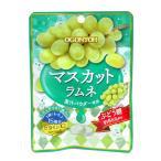 黄金糖 マスカットラムネ30g【イージャパンモール】