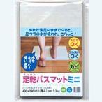 Yahoo!eジャパンフジワラ化学 踏んだ瞬間、足裏サラサラ! 足乾バスマット ミニ【ホームセンター・DIY館】