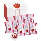 【送料無料】花いちごのバラエティアイス(博多あまおう) A−DR【ギフト館】