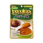 ハウス食品 介護食 区分4 かまなくてよい やさしくラクケア とろとろ煮込みハンバーグ味 88468  80g (介護食 食品) 介護用品