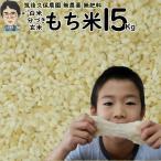 無農薬 無肥料 栽培米 もち米 15Kg | 福岡県産 ひよくもち 筑後久保農園 自然栽培米