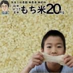 無農薬 無肥料 栽培米 もち米 20Kg | 福岡県産 ひよくもち 筑後久保農園 自然栽培米