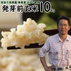 ボカシ栽培 発芽前玄米 10Kg