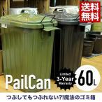 ペールカン60L ゴミ箱 ごみ箱 ダストボックス ふた付き 容量 60リットル キッチン 日本製  シンプル 生ごみ おむつ におい