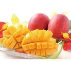 お中元 フルーツ 宮崎県産完熟マンゴー M15-5 宮崎県 ギフト 詰め合わせ 贈り物 送料無料