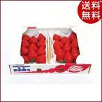 お歳暮 ギフト フルーツ いちご 博多あまおう P15-70 福岡県 詰め合わせ 贈り物 送料無料