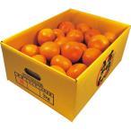 ショッピングフルーツ お歳暮 早割 フルーツ ギフト 和歌山県産有田みかん(3kg) お返し お礼 送料無料