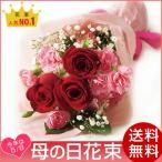 母の日 プレゼント 2017 母の日花束 カーネーション 赤系 数量限定品 花 メッセージカード付き 送料無料