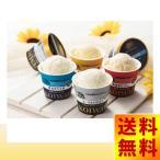 ショッピングアイスクリーム お年賀 スイーツ アイスクリーム ギフト 小岩井農場 自家製アイスクリーム 岩手 挨拶 送料無料