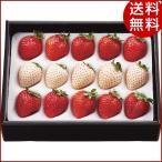 お歳暮 フルーツ 紅白いちご(計200g) 贈り物 ギフト クリスマス 送料無料