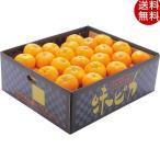 お歳暮 果物 愛媛県産JAにしうわ 味ピカみかん(5kg) フルーツ 詰め合わせ ギフト 贈り物 送料無料