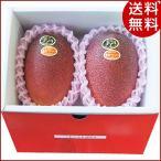 お中元 果物 太陽のタマゴ 宮崎県産マンゴー フルーツ ギフト 詰め合わせ 贈り物 送料無料