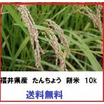 送料無料 減農薬 令和元年産 福井県産 もち米 たんちょうもち 10kg 認定農業者生産品 国内産 もち米 10kg モチ米 餅米 新米 タンチョウ餅 たんちよう餅