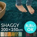 洗える ラグ シャギーラグ ラグマット カーペット 200×250cm マイクロファイバー 長方形 滑り止め 絨毯 ウォッシャブル 床暖房対応 滑り止め付き