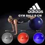 ショッピングアディダス アディダス adidas hardware ジムボール 55cm 空気入れ付き バランスボール トレーニング フィットネス