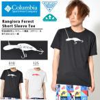 ╚╛┬╡Tе╖еуе─ е│еэеєе╙ев Columbia есеєе║ Rangiora Forest Short Sleeve Tee еыевб╝е╟е╢едеє еэе┤T 2018╜╒▓╞┐╖║ю е╨е╣ ─рдъ е╒еге├е╖еєе░