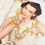 アップリケ 刺繍ワッペン レオタードモチーフ ゴールド アイロンワッペン アイロン接着 アップリケワッペン パーツ 素材 モチーフ 装飾 バトントワリング