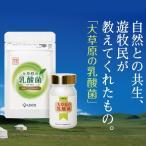 大草原の乳酸菌 NS-Max(36カプセル)、 年齢を重ねるにつれて減っていく善玉菌、増えていく悪玉菌。