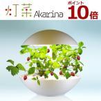 Yahoo!家電と雑貨のemon(えもん)LED水耕栽培 植物育成器 灯菜(アカリーナ) 野菜 ハーブ お花 オリンピア照明 OMA01RN0J 【100サイズ】