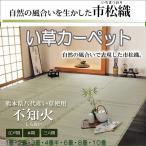 江戸間6畳  い草上敷きカーペット261x352cm(不知火しらぬい) kh811-6e