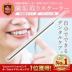 歯垢取り スケーラー 除去 器具 自宅用 歯石になる前に自分で取る ヤニとり ステンレス製 先極細 デンタルツール しこう取り