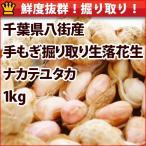 endo-peanuts_w1113