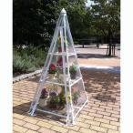 組立式温室ピラミッド(幅67×奥行き67×高さ150cm)