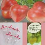 ハートのトマトミニ5個入り(ミニトマト用型どりケース)