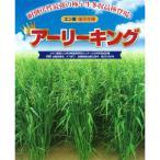 有効期限19年06月 牧草種子 エン麦 アーリーキング 1kg 夏 秋まき タネ