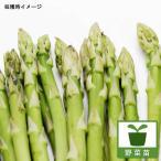 野菜の苗 / アスパラガス:メリーワシントン3号ポット 4株セット